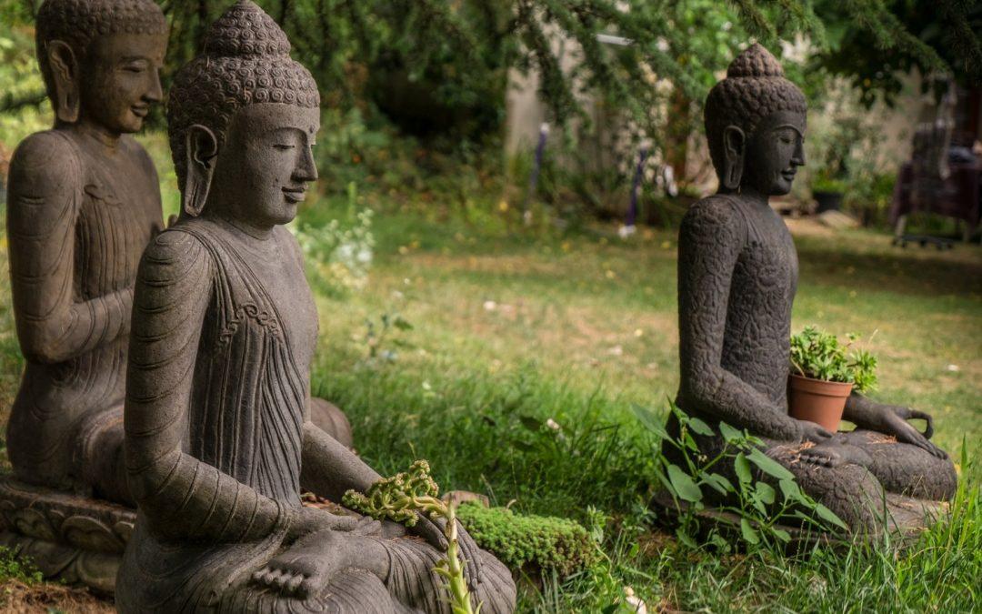 The Fourteen Mindfulness Trainings